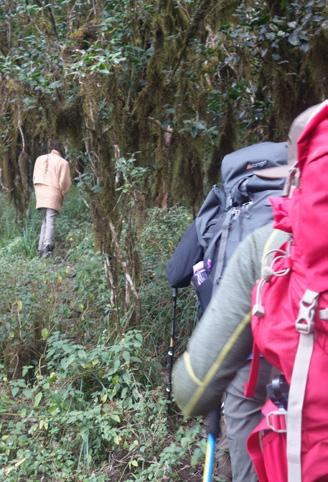 Travel from Arusha to Longido to experience walking through the beautiful African bush, to the summit of Mount Longido (2690m).