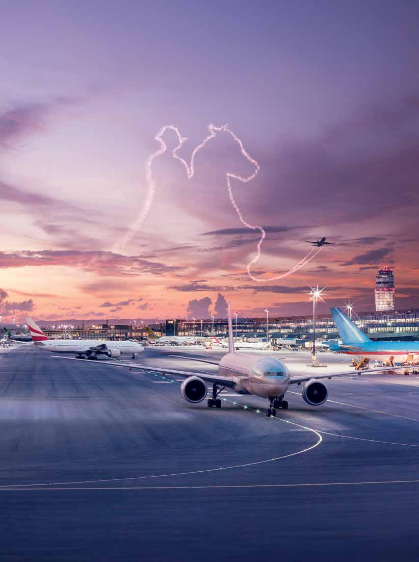 VIENNA WHERE CENTRAL EUROPE TAKES OFF Where emerging markets are only a hop away: Vienna Airport is the largest hub in the region and on leading position to Central and Eastern Europe.