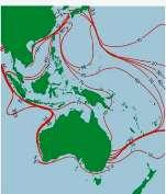 Diversity Our reefs contribute to at least over P 80 billion pesos in goods and