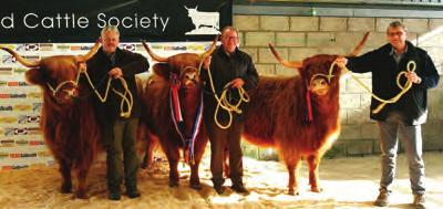 On Monday the Sale commenced at 10am, two animals shared the top price of 3000, Ailsa 9th of Craigowmill from Ken & Eva Brown of Kinross who was sold to Michael & Sally Nairn of Balnabroich Farms and