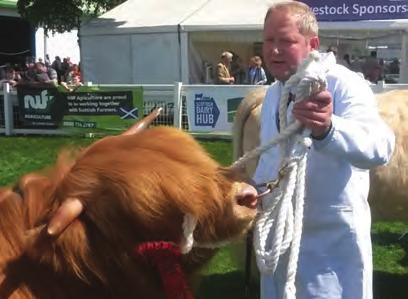 Ruadh 41st Of Pollok 2nd Howman, Mr K C R, Maireared Stuamaig 2nd of Borland, UK542205 100495, S: Stepdancer 3rd Of Glengorm, D: Maireared Buidhe 1st of Borland 3rd MacNaughton & Lawrie, Mr, Skye 4th