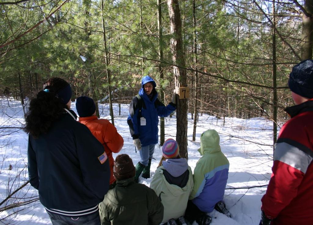 Forest Ecology Hike through our forest, learning