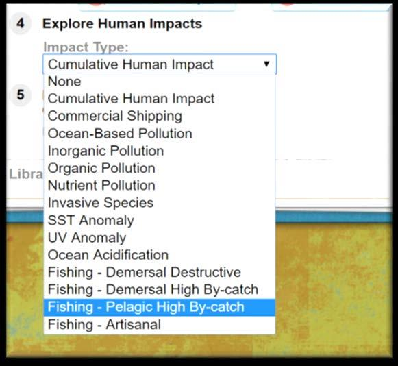 Make and complete a table like Table 1 on Slide 12. Use the Human Impacts Map overlay to find out how sharks are being affected by human activities in their hotspots.