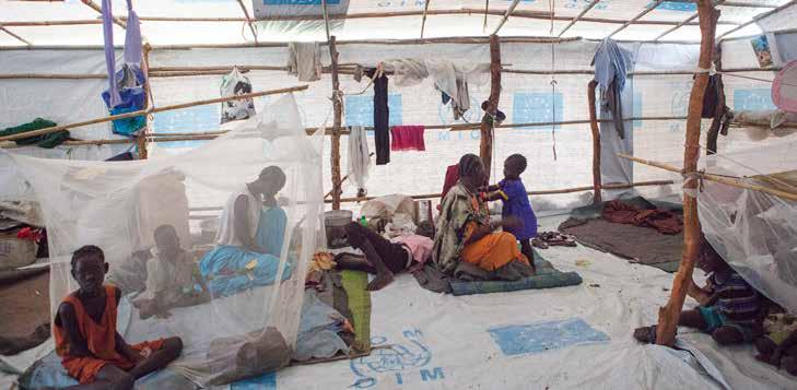 6 Mosquito Net Mosquito Net @ IOM 2016 (Photo: Bannon) Pre-treated long lasting impregnated mosquito net (LLIN). Must be WHO/WHOPES approved. (http://www.who.int/whopes/en) (full or interim).