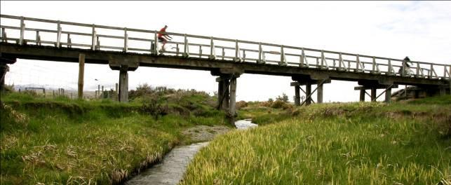 Objective: Implement a research, marketing and promotion plan for the mutual benefit of Rail Trail users and Central Otago businesses, organisations and communities. Recommendations for action: 1.
