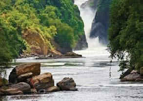 travel trade to meet network opportunities in Uganda s tourism industry and conduct business under one roof.