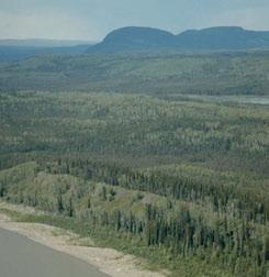 JPG Dry shrublands and grasslands (foreground) surrounded by mixed-wood and deciduous forests on very steep, south facing slope breaks of the Mackenzie River provide local habitat diversity and