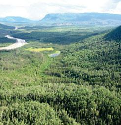3.7.2 Mackenzie Foothills HBbs Ecoregion The Carlson River meanders through a deep, flat-bottomed valley; it is bordered by wetlands, shrublands and tall white