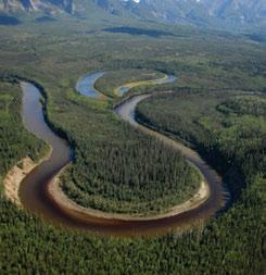 3.7.4 Nahanni Tetcela Valley HBb Ecoregion The Tetcela River meanders in broad loops, depositing clays, silts and sands on the inside of the loops and eroding the riverbanks on the outside.