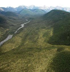 3.7.8 Liard Plateau HBbs Ecoregion The meandering Flat River occupies a deep flat-bottomed valley flanked by low limestone mountains in the western part of the Ecoregion.