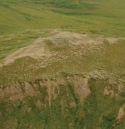 3.4.2 Richardson Mountains HSa Ecoregion Solifluction occurs when surface layers of permafrost thaw during the summer and the saturated soil flows slowly downslope, producing lobes like those seen in