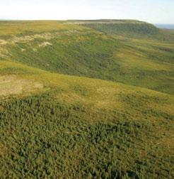 3.6.1 Arctic Red Upland LSb Ecoregion The north-facing slopes of the Yellow Hills, an eroded plateau formed by level Cretaceous shale beds in the central part of the Arctic Red Upland LSb Ecoregion,