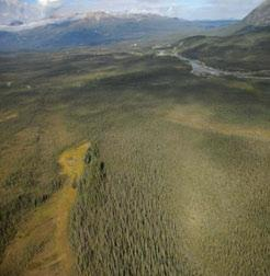 3.6.4 Tigonankweine Range LSas Ecoregion The lower slopes of the Keele River valley are broad seepage zones with permafrost; the light green areas