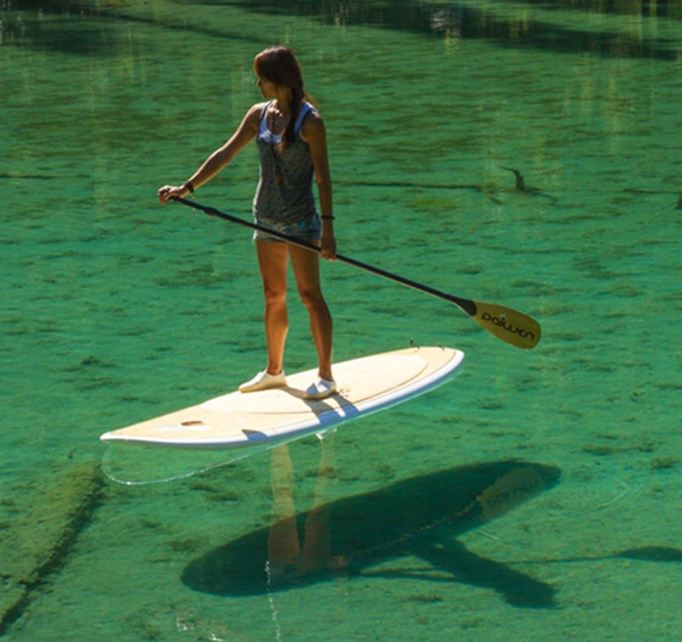 "11. BIC 11'6"" PERFORMER TOUGH STAND UP PADDLEBOARD WITH PADDLE & WAIST BELT PERSONAL FLOATATION DEVICE Sponsored by Appomattox River Company Estimated Value: $900 Family friendly and"