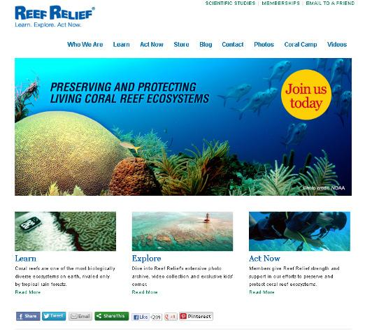 org that posts the Reef News monthly, scientific studies, educational resources, and other coastal and marine resource news. The site is viewed by over 5,000 visitors each month.