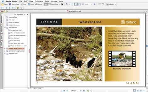 BEAR WISE Using this ebook Click here to continue TURNING PAGES go to ebook page: first / previous / next / last TURNING PAGES: JUMP TO ANY PAGE FROM ANYWHERE Click on the Table of Contents or on any