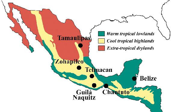 Describe the climate in the lowlands of Central America and the Caribbean.