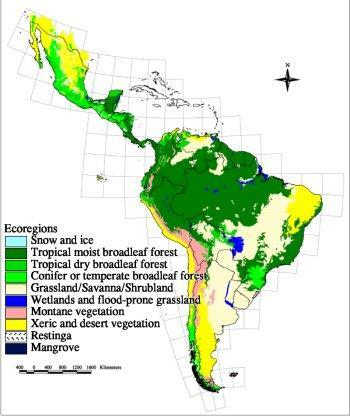 Why do the Andes and the Pampas have a wide range of ecosystems?