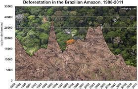 What is the major way Brazilian government is defending the rain forest?