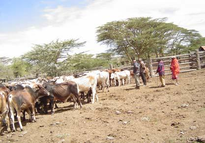 to maintain order in the greater northern Kenya