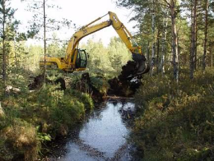 HYDROPLAN LIFE Forest Habitat Restoration within the Gauja
