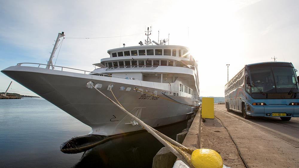PICTOU COUNTY CRUISE ASSOCIATION NICHE PORT CRUISE OPPORTUNITY PEARL MIST