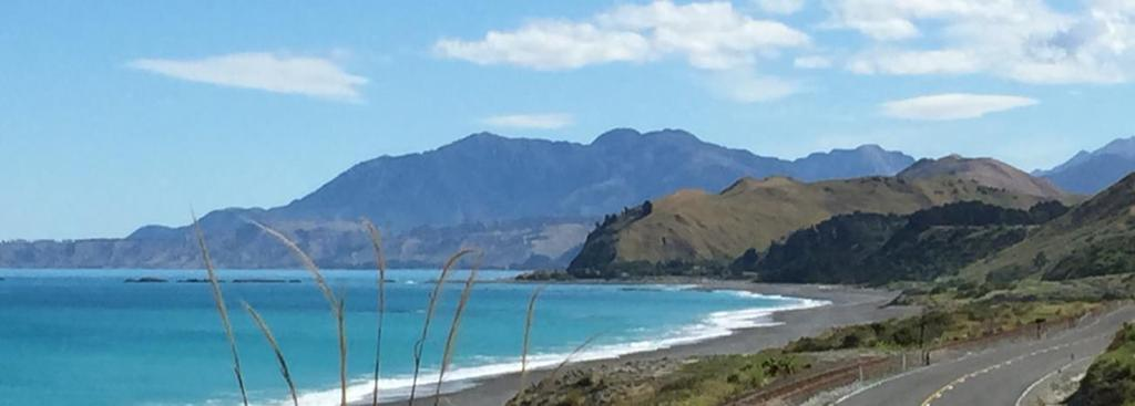 the picturesque town of Kaikoura