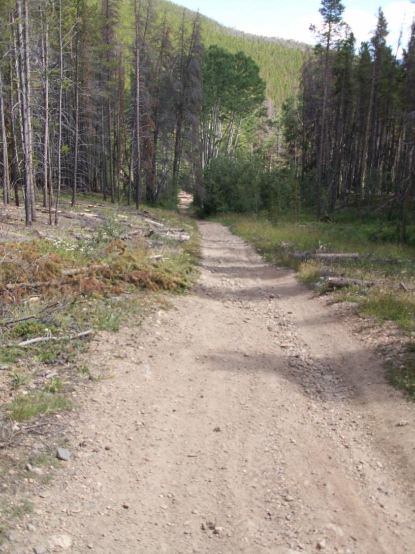 Figure 1 Example of a section of road that would be converted to single-track trail. Waterbars would be constructed across the entire width (W).
