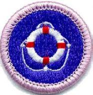 Work Required: Swimming merit badge Materials needed: