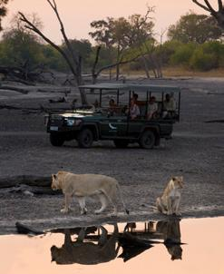 Your mobile camping adventure is fully inclusive from the time you arrive in Botswana, every aspect of your journey will be conveniently organised