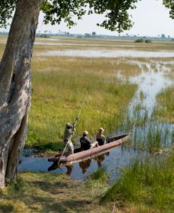 Best of Northern Botswana Chobe, Savute, private concessions in the Okavango Delta.