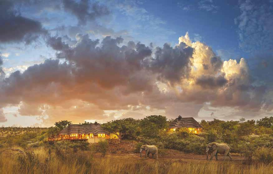 Giltedge Africa Change your life with an African vacation Sign up for a life-changing travel experience with award-winning Giltedge Africa, by choosing from our superlative array of luxury