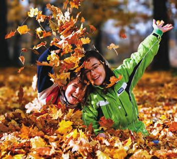 5. Collect fallen leaves and throw them in the air! One of the best parts of winter (except for the mud!) is the beautiful leaves that make their way onto the ground in Victoria Park.
