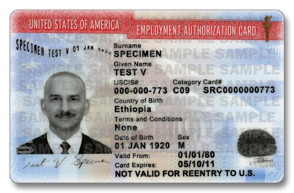 The Employment Authorization Document (EAD) Review card to make sure the information is accurate.
