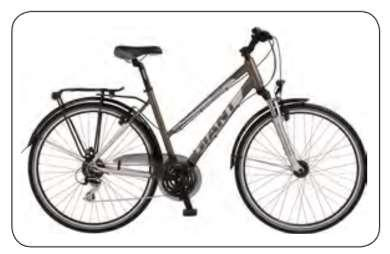 adjustable handle bars, bike stand, mudguards, bottle holder as standard. Odometer included.