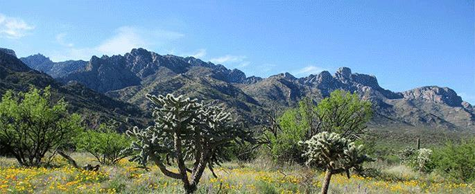 Tucson Drifters Oro Valley Rally October 20-23, 2016 Welcome to the silence of Catalina State Park, 11570 N. Oracle Rd., Tucson, AZ 85737. no trains, no heavy traffic, and no airports.