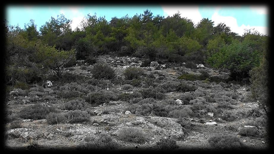 It s now late September and the weather is a little cooler and I m up for another exploratory trip to the Akamas to find