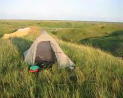 Conflicts could be avoided by establishing activity schedules with grazing closures during the peak camping season and also by fencing the camping nodes.