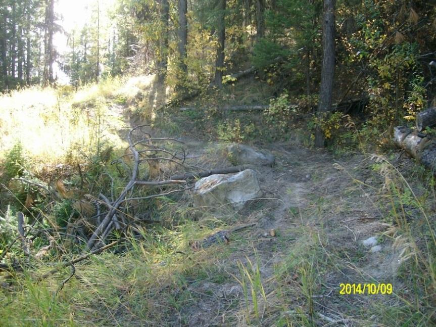 Additional illegal off-road use occurs along FR 2000085, FR 2000450, within the planning area s gravel pits and along the powerline corridor.