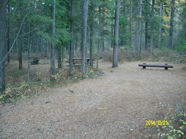 A system of Forest roads and trails provides visitors with easy access throughout the planning area.