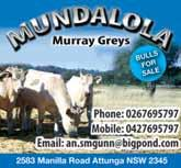 Stud Breeders Guide - Cattle - Beef - Piedmontese 59 Aurora Culburra Beach 175 Prince Edward St...0438 20 1922 Ayr Park Woodstock 578 Goodacre Dr...6345 0261 Bar M Dripstone Burrendong Way.