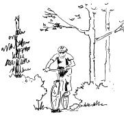A. Non-motorized use trails (single use) A2 Cyclist (mountain biking, trail touring, freestyle riding) Basic Description: This user category includes any person on a bicycle.
