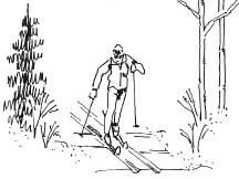 A. Non-motorized use trails (single use) A6 Cross-Country Skiing (track skiing, skate skiing, backcountry skiing) Basic Description: This category includes any person using cross-country skis.