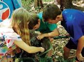 Become a Woodlander this summer, and discover adventure in the Harris Center woods and beyond.