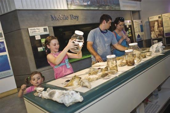 The sea lab uses the actual natural resources, plants and animals found in our region as a means to educate visitors.
